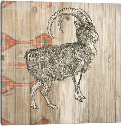 Natural History Lodge Southwest VII Canvas Art Print