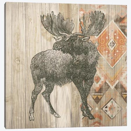 Natural History Lodge Southwest VIII Canvas Print #WAC4516} by Wild Apple Portfolio Canvas Art