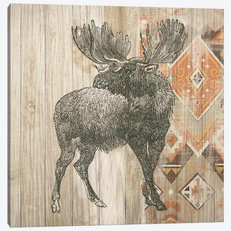 Natural History Lodge Southwest VIII Canvas Print #WAC4516} by Wild Apple Portfolio Canvas Art