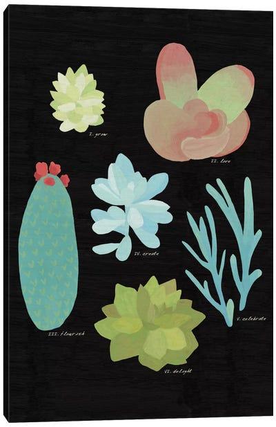 Succulent Plant Chart II Canvas Print #WAC4528