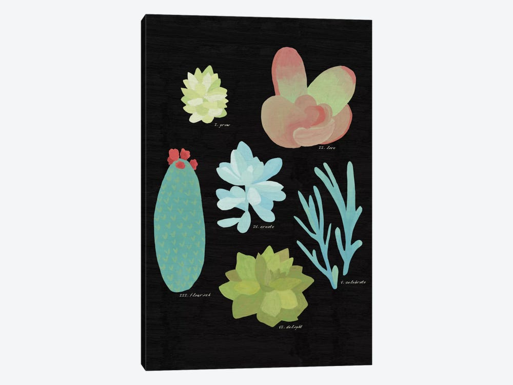 Succulent Plant Chart II by Wild Apple Portfolio 1-piece Canvas Art