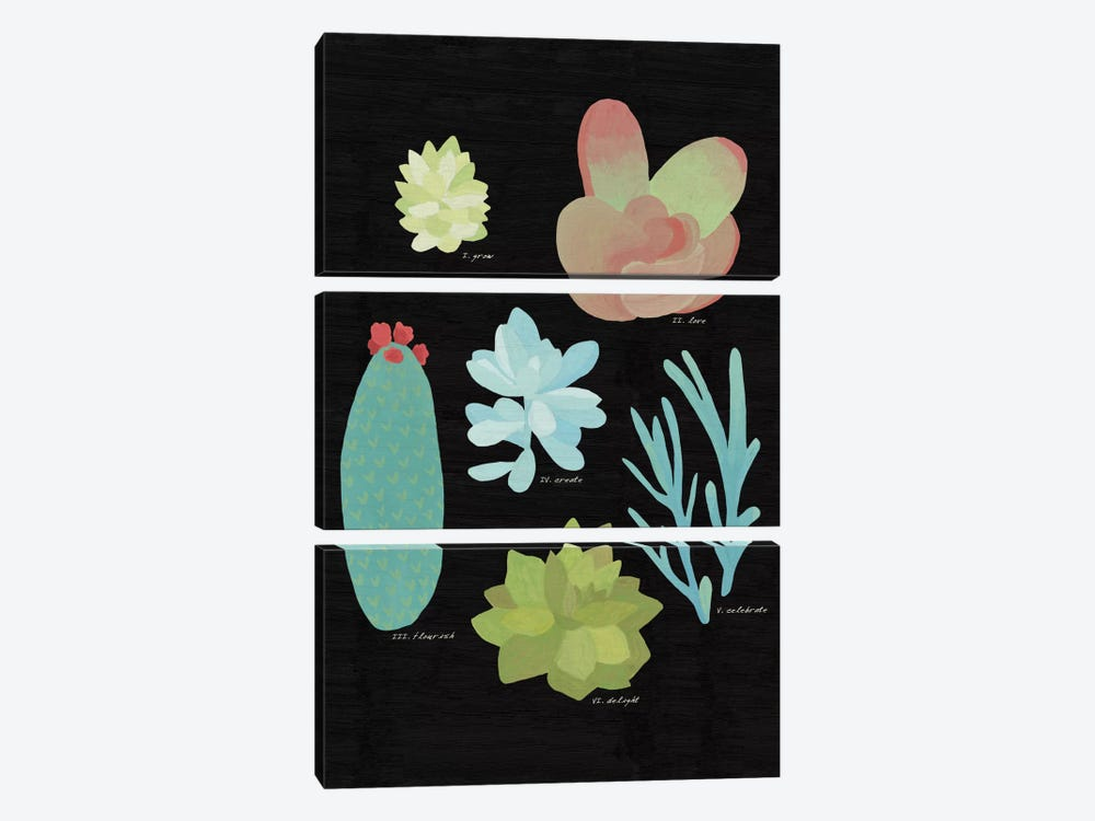 Succulent Plant Chart II by Wild Apple Portfolio 3-piece Canvas Art