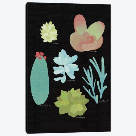 Succulent Plant Chart II Canvas Print #WAC4528} by Wild Apple Portfolio Canvas Art