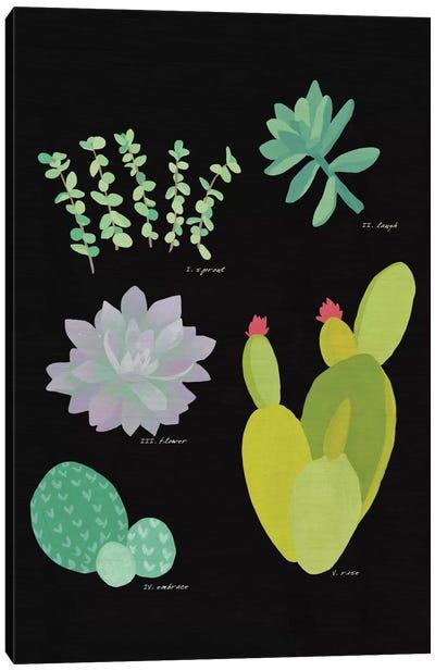 Succulent Plant Chart III Canvas Print #WAC4529