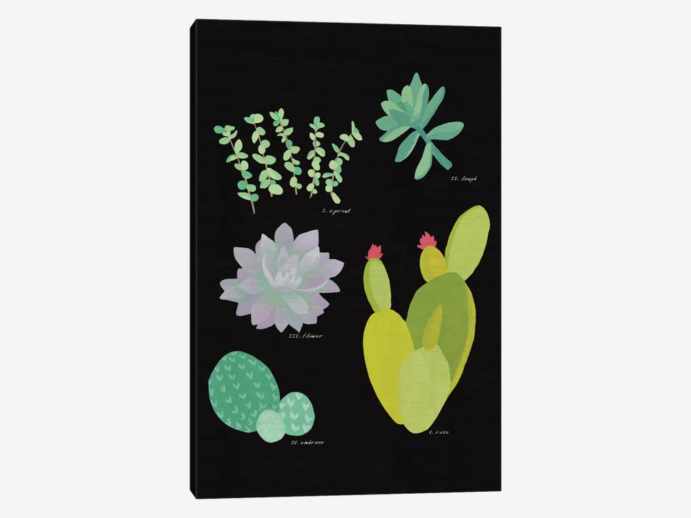 Succulent Plant Chart III by Wild Apple Portfolio 1-piece Canvas Art Print