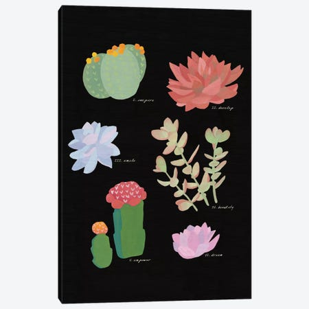 Succulent Plant Chart V Canvas Print #WAC4531} by Wild Apple Portfolio Art Print