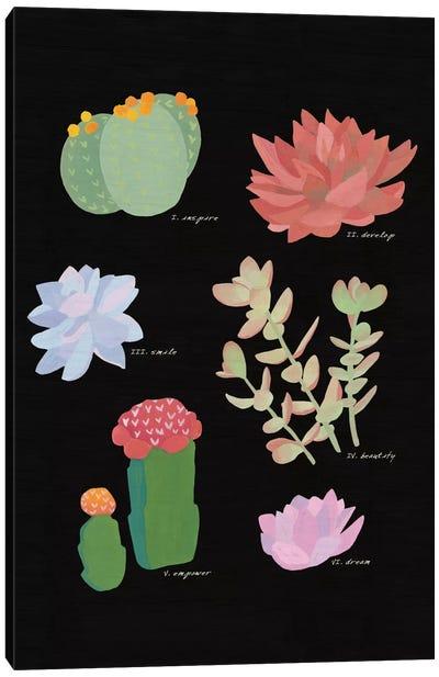 Succulent Plant Chart V Canvas Print #WAC4531