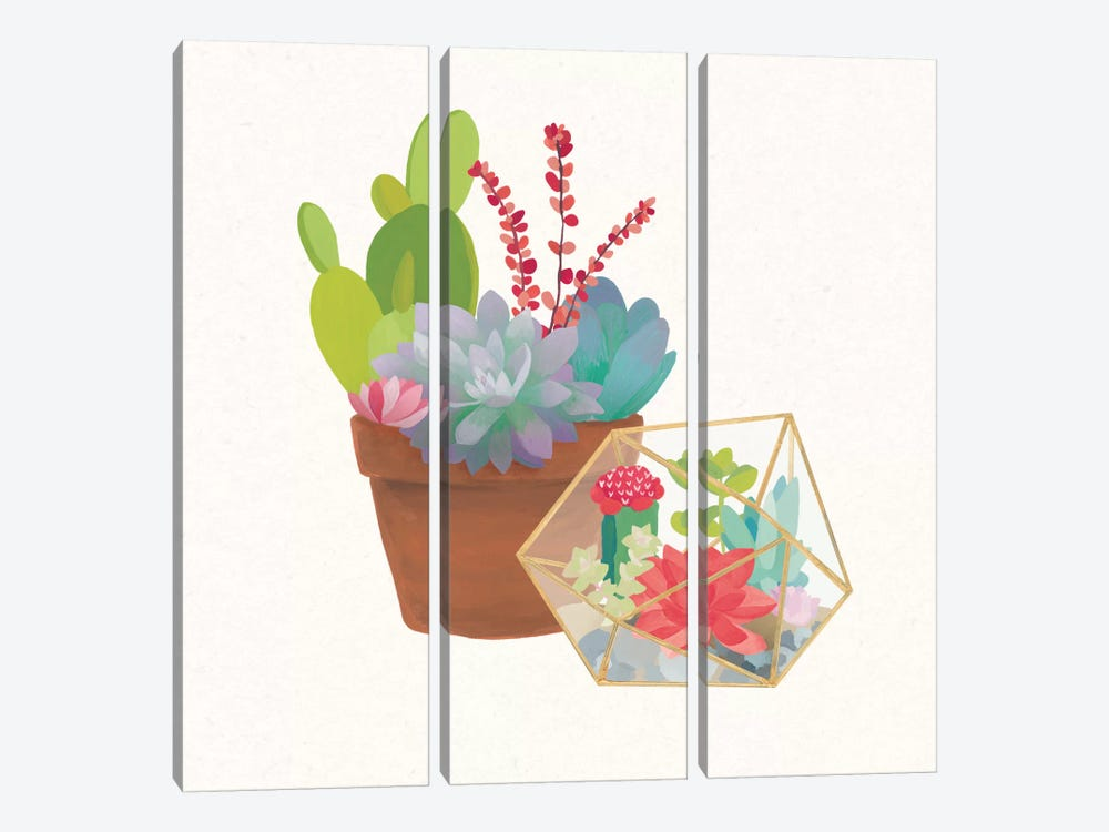 Succulent Garden II by Wild Apple Portfolio 3-piece Canvas Wall Art