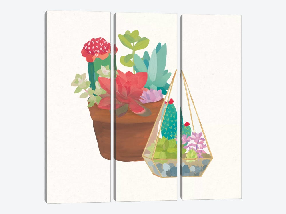 Succulent Garden IV by Wild Apple Portfolio 3-piece Canvas Art