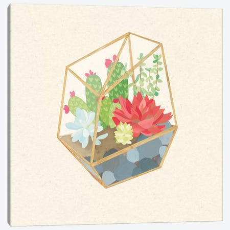 Succulent Terrarium IV Canvas Print #WAC4536} by Wild Apple Portfolio Canvas Art