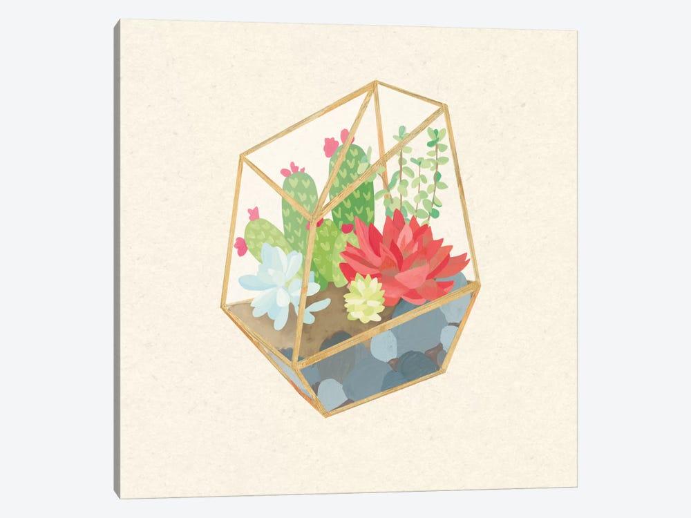 Succulent Terrarium IV by Wild Apple Portfolio 1-piece Art Print