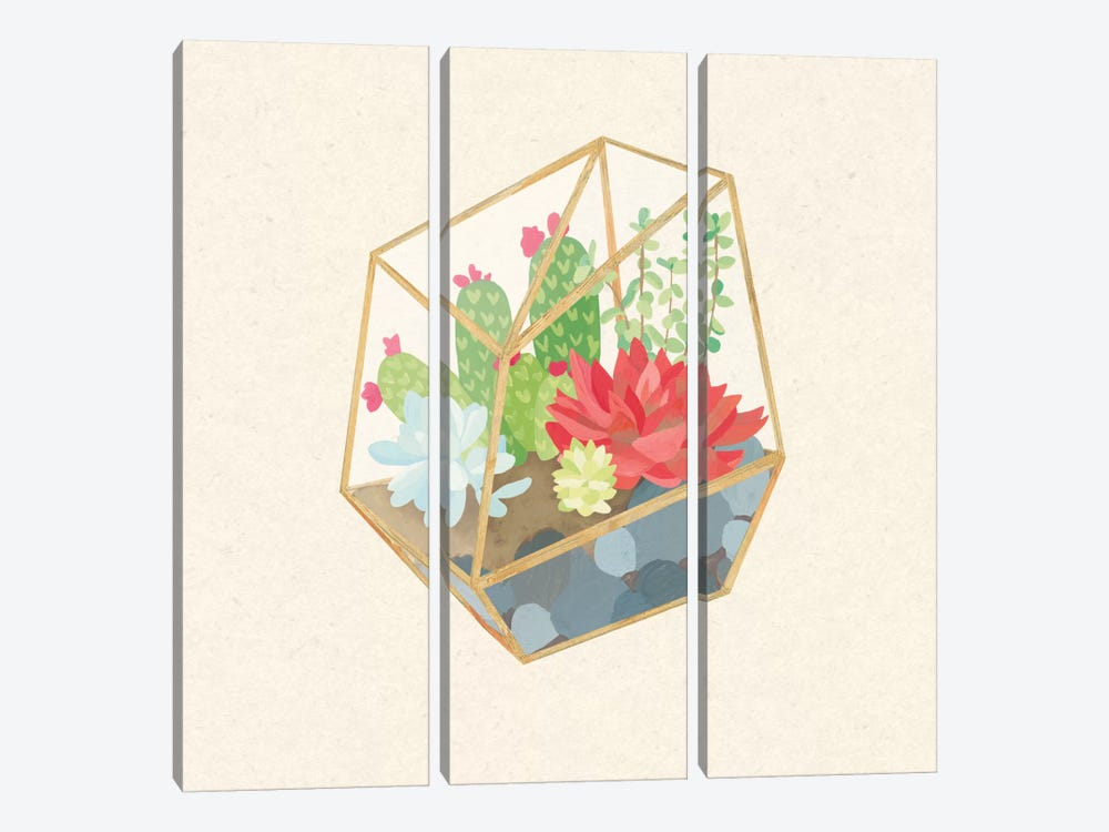 Succulent Terrarium IV by Wild Apple Portfolio 3-piece Canvas Print