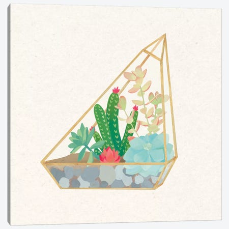 Succulent Terrarium V Canvas Print #WAC4537} by Wild Apple Portfolio Canvas Artwork