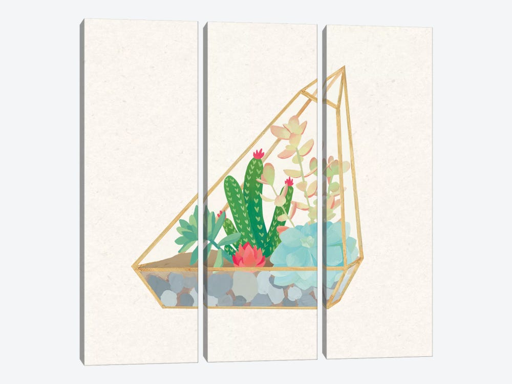 Succulent Terrarium V by Wild Apple Portfolio 3-piece Canvas Artwork