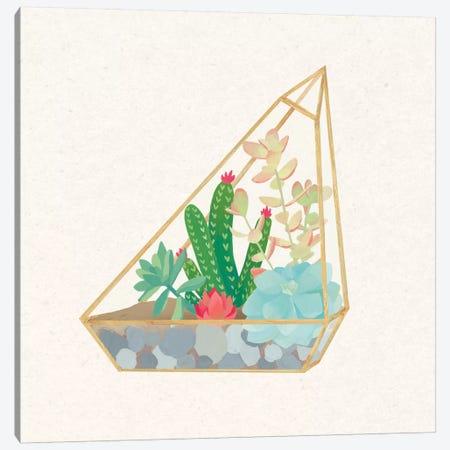 Succulent Terrarium V Canvas Print #WAC4537} by Wild Apple Portfolio Canvas Artwork