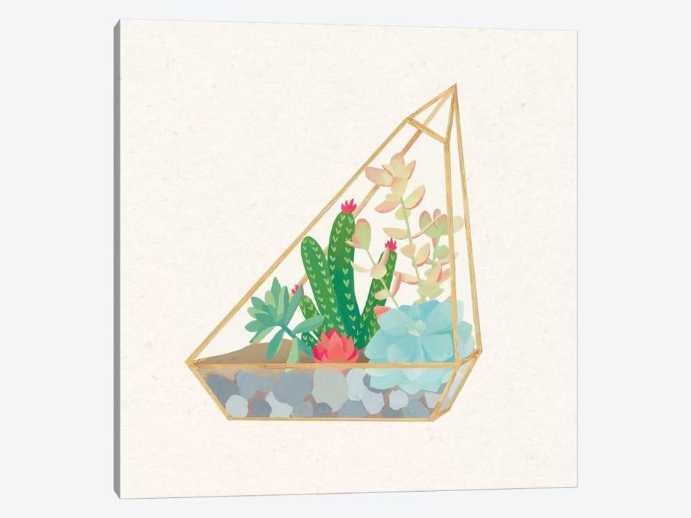 Succulent Terrarium V by Wild Apple Portfolio 1-piece Canvas Art