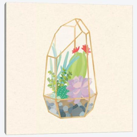 Succulent Terrarium VI Canvas Print #WAC4538} by Wild Apple Portfolio Art Print