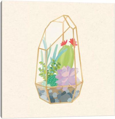 Succulent Terrarium VI Canvas Art Print