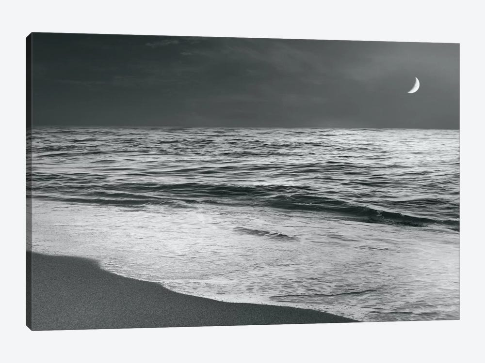 Moonrise Beach by Sue Schlabach 1-piece Art Print