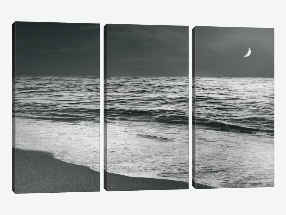 Moonrise Beach by Sue Schlabach 3-piece Canvas Print