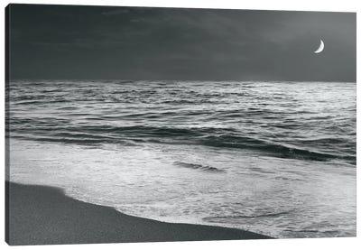 Moonrise Beach Canvas Art Print