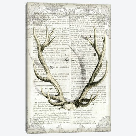Regal Antlers On Newsprint I Canvas Print #WAC4562} by Sue Schlabach Canvas Artwork