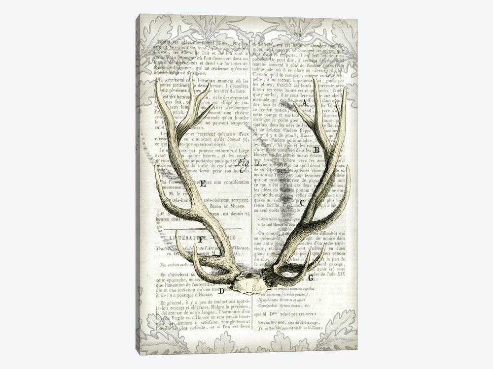 Regal Antlers On Newsprint I by Sue Schlabach 1-piece Canvas Wall Art