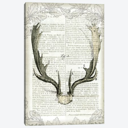 Regal Antlers On Newsprint II Canvas Print #WAC4563} by Sue Schlabach Canvas Art