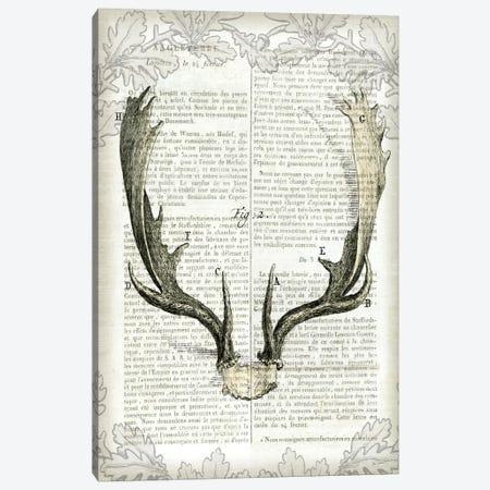 Regal Antlers On Newsprint II Canvas Print #WAC4563} by Sue Schlabach Canvas Art