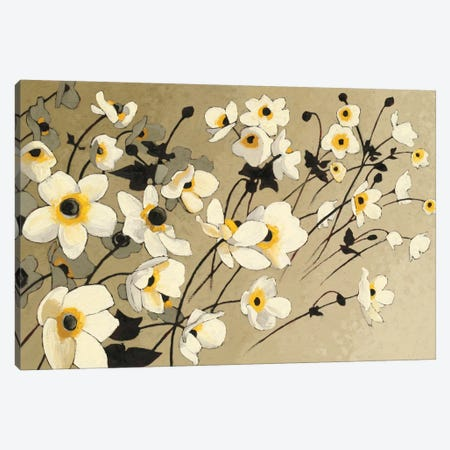 Anemones Japonaises Blancs Canvas Print #WAC4568} by Shirley Novak Canvas Artwork