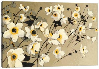 Anemones Japonaises Blancs Canvas Print #WAC4568