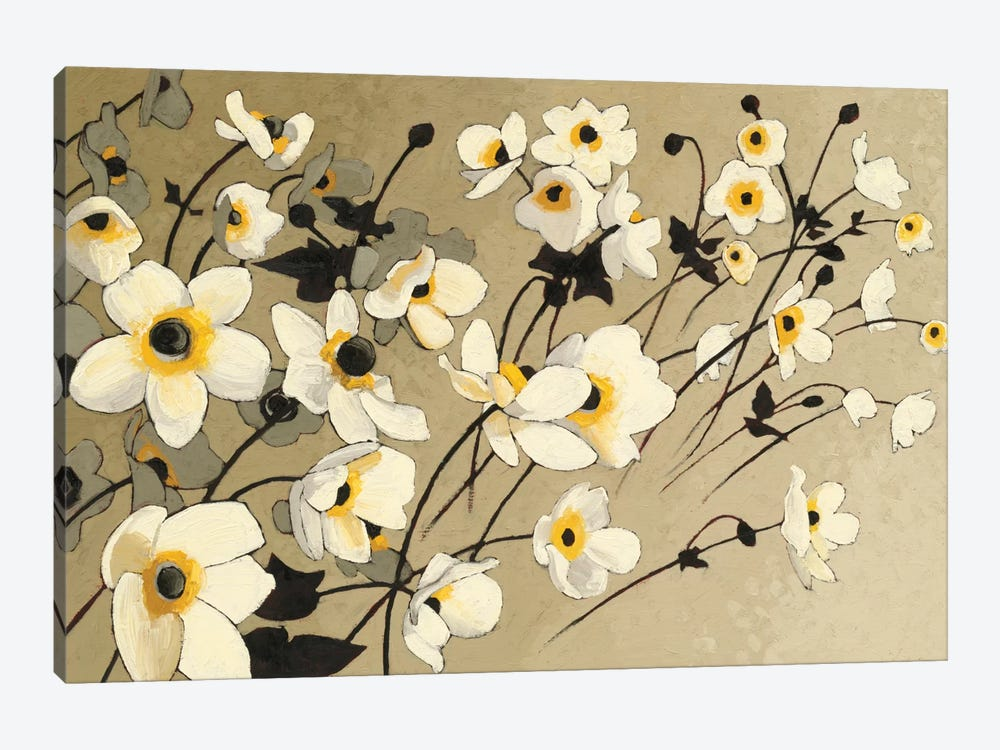Anemones Japonaises Blancs by Shirley Novak 1-piece Canvas Wall Art