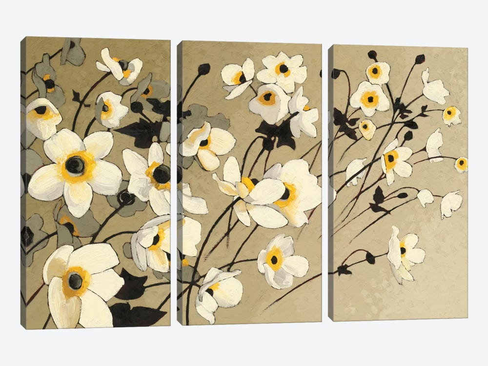 Anemones Japonaises Blancs by Shirley Novak 3-piece Canvas Artwork