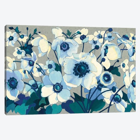 Anemones Japonaises I Canvas Print #WAC4569} by Shirley Novak Canvas Wall Art