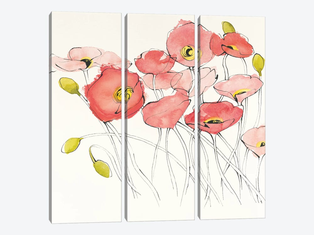 Black Line Poppies I by Shirley Novak 3-piece Canvas Artwork