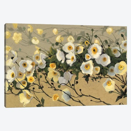 Breezes I Canvas Print #WAC4578} by Shirley Novak Art Print