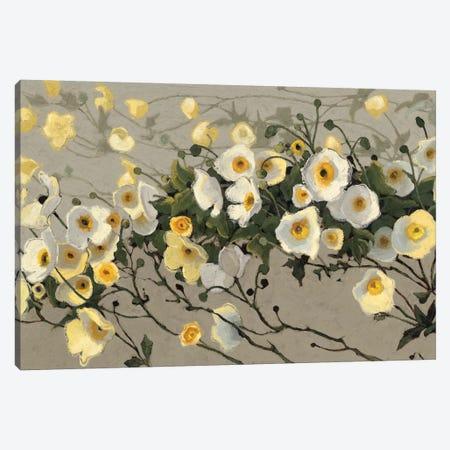 Breezes II Canvas Print #WAC4579} by Shirley Novak Canvas Print