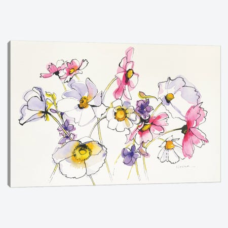 Cosmos Cosmos Canvas Print #WAC4580} by Shirley Novak Canvas Artwork