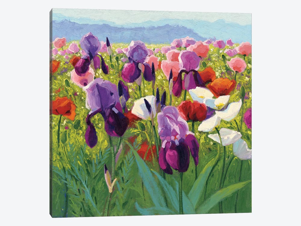 Early June by Shirley Novak 1-piece Canvas Print