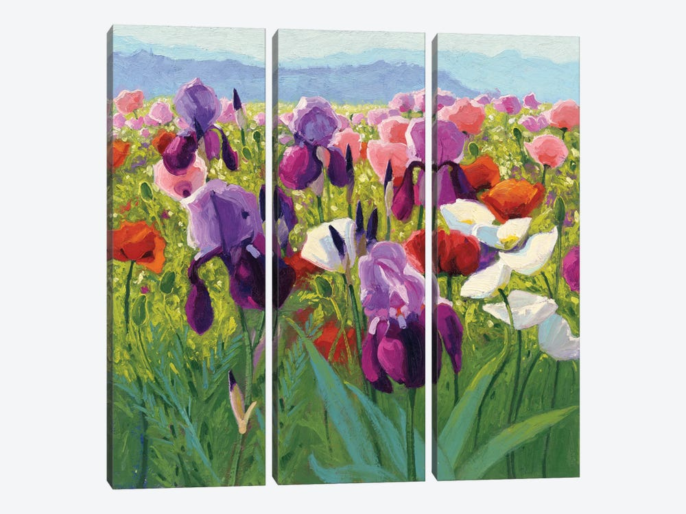 Early June by Shirley Novak 3-piece Art Print