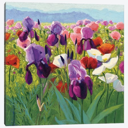Early June Canvas Print #WAC4581} by Shirley Novak Canvas Wall Art