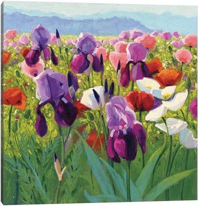 Early June Canvas Art Print