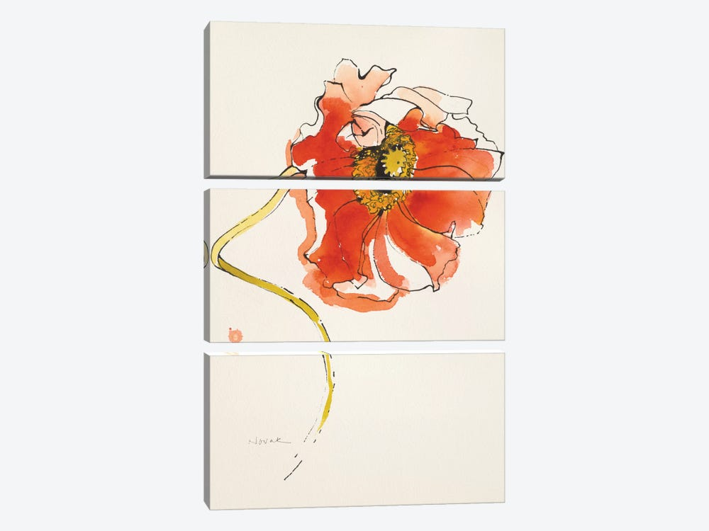 Red Icelands II by Shirley Novak 3-piece Art Print