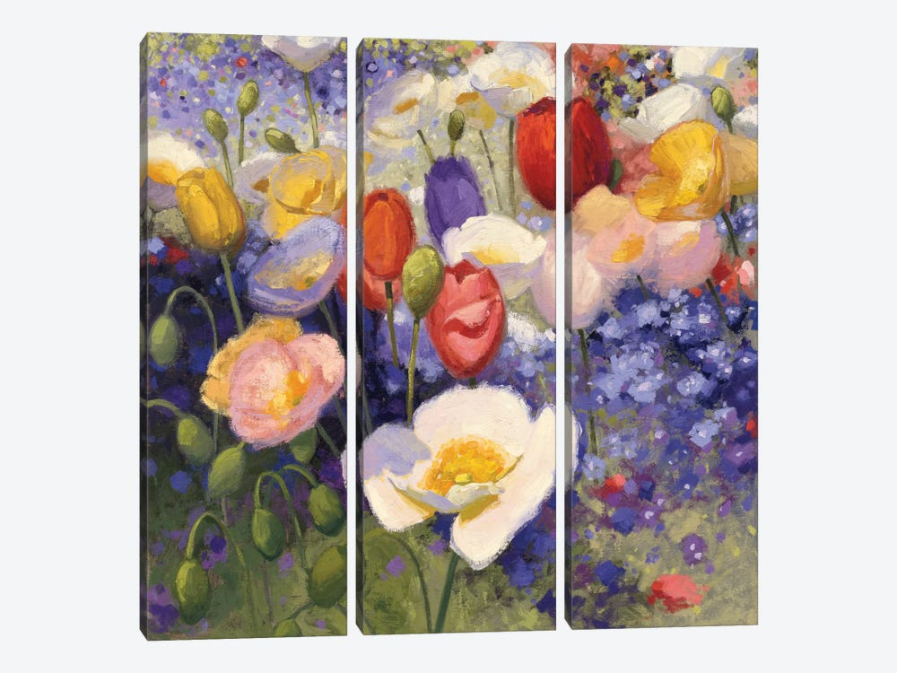 Tulips And Poppy Party by Shirley Novak 3-piece Canvas Art