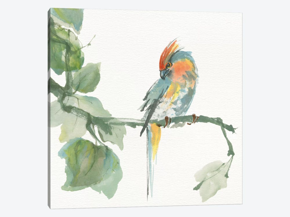 Crested Cockatoo 1-piece Canvas Wall Art