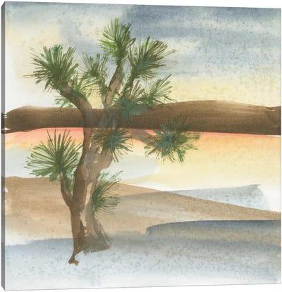 Desert Joshua Tree Canvas Art Print