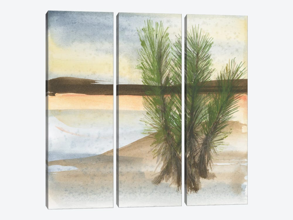 Desert Yucca 3-piece Canvas Artwork