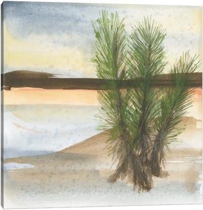 Desert Yucca Canvas Art Print