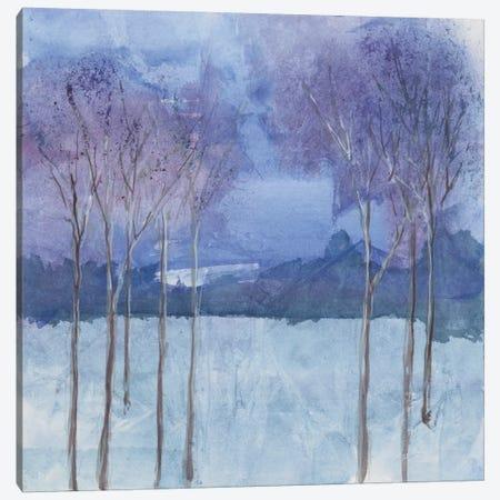Evening Serenade II Canvas Print #WAC4629} by Chris Paschke Canvas Print