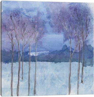 Evening Serenade II Canvas Art Print